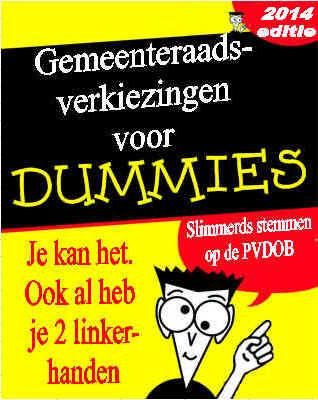 dunmmies 2014