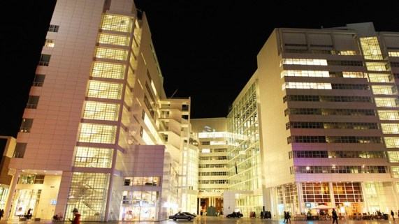 Buitenkant-stadhuis-Den-Haag